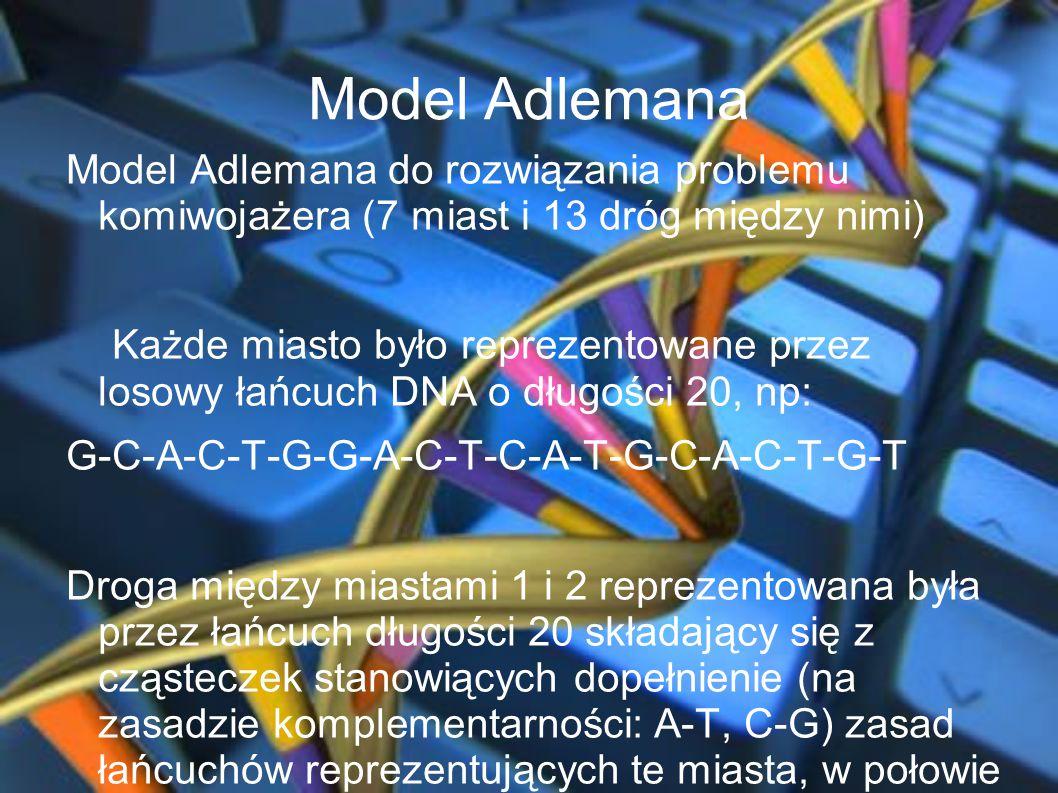 Model Adlemana Model Adlemana do rozwiązania problemu komiwojażera (7 miast i 13 dróg między nimi) Każde miasto było reprezentowane przez losowy łańcu