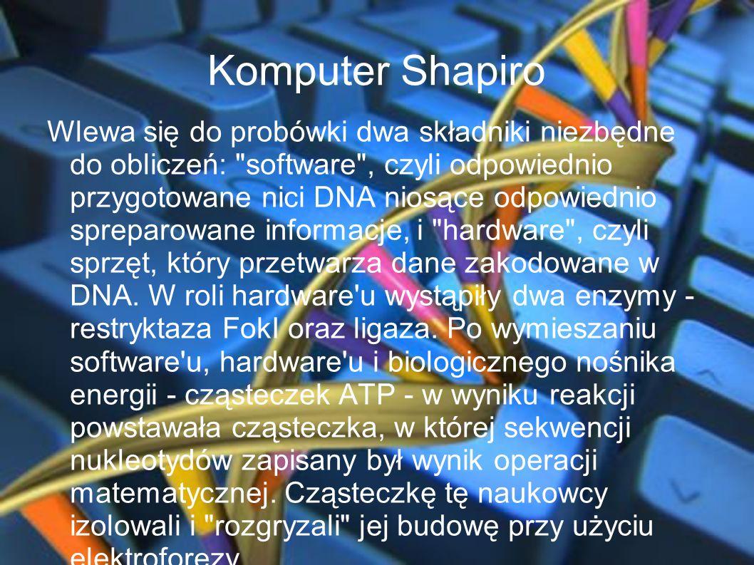 Komputer Shapiro Wlewa się do probówki dwa składniki niezbędne do obliczeń: