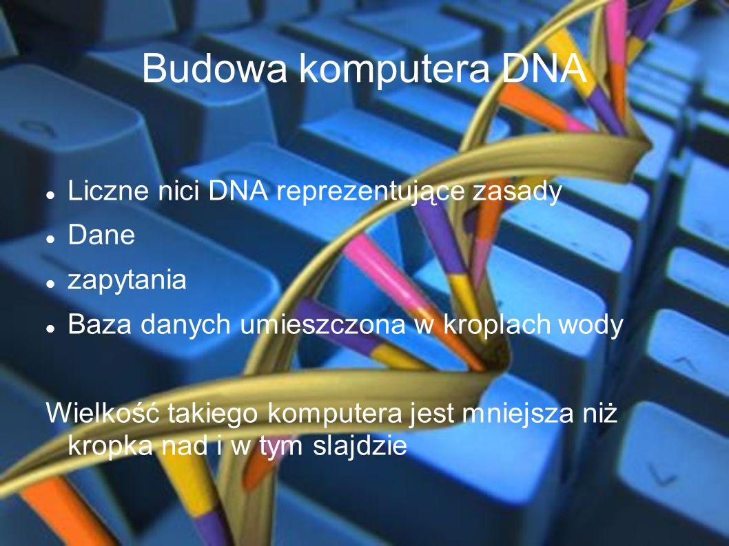 Budowa komputera DNA Liczne nici DNA reprezentujące zasady Dane zapytania Baza danych umieszczona w kroplach wody Wielkość takiego komputera jest mnie