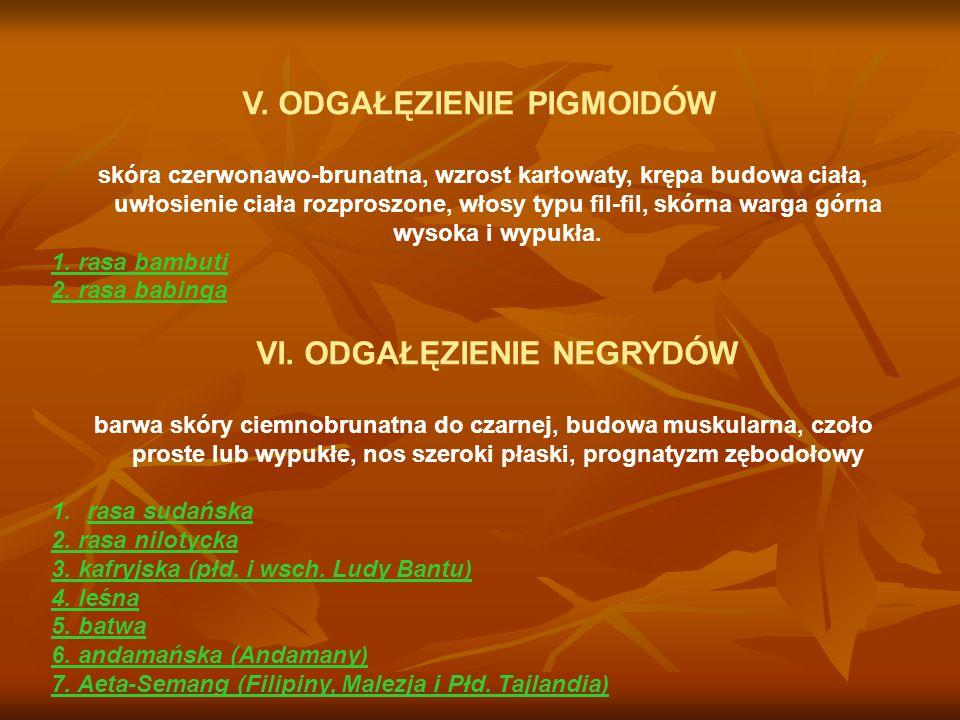 KRĄG FORM BOREALNYCH C.