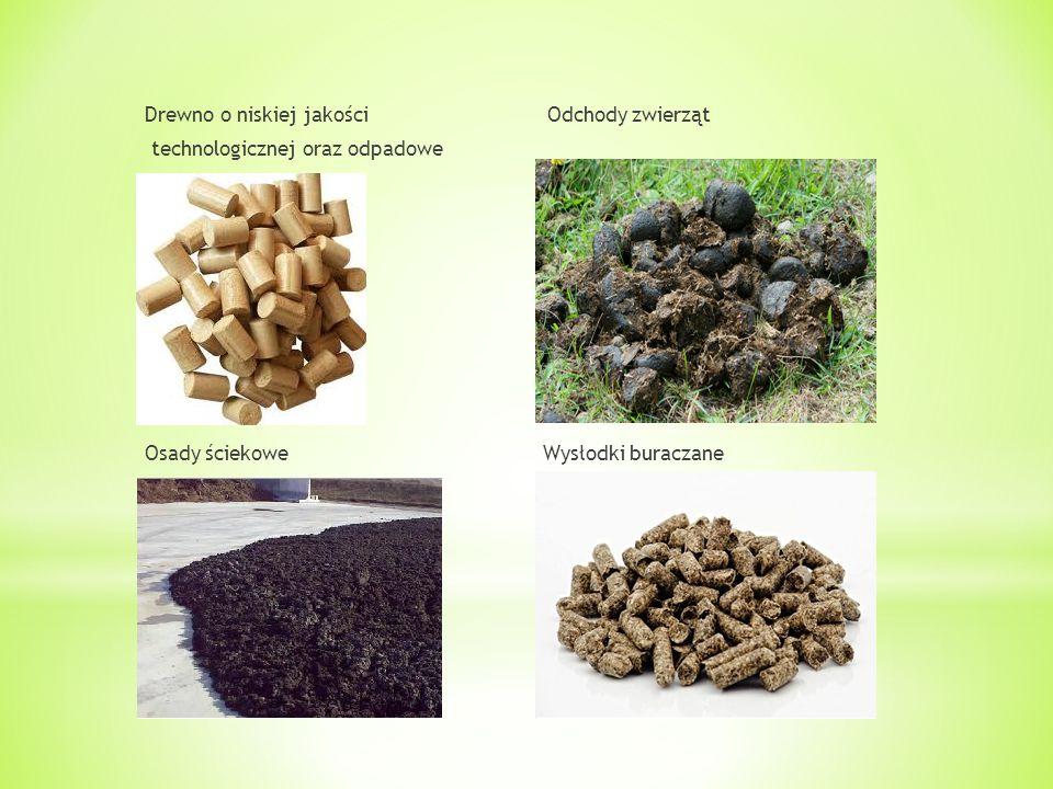 Drewno o niskiej jakości Odchody zwierząt technologicznej oraz odpadowe Osady ściekowe Wysłodki buraczane