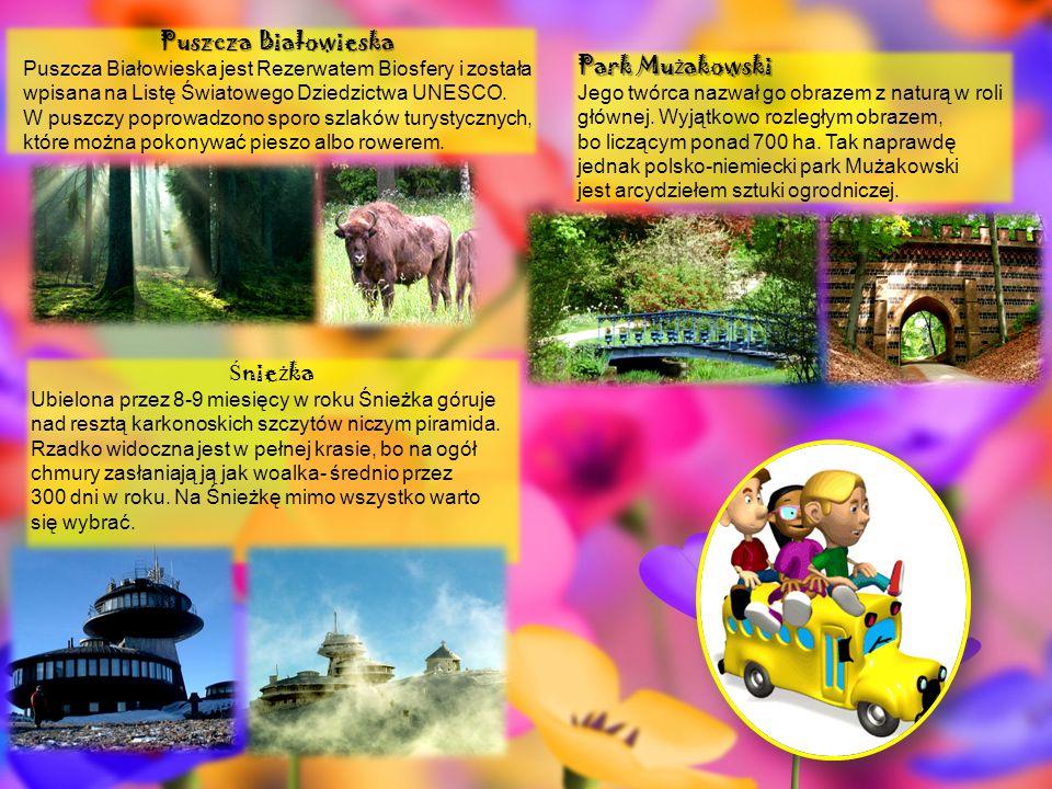Puszcza Białowieska Puszcza Białowieska jest Rezerwatem Biosfery i została wpisana na Listę Światowego Dziedzictwa UNESCO. W puszczy poprowadzono spor