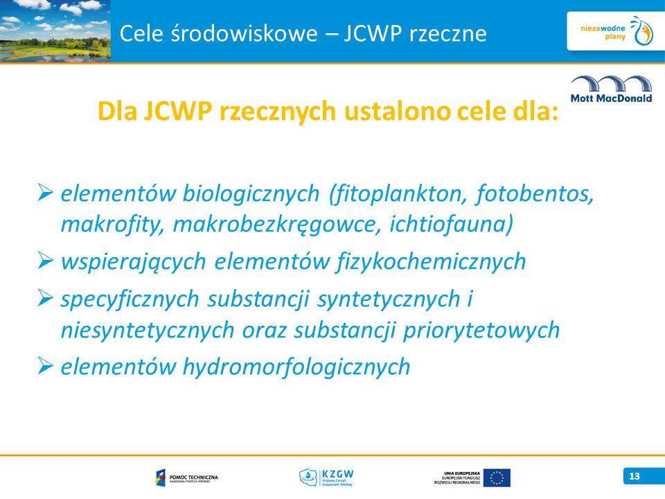 Cele środowiskowe – JCWP rzeczne Dla JCWP rzecznych ustalono cele dla:  elementów biologicznych (fitoplankton, fotobentos, makrofity, makrobezkręgowce, ichtiofauna)  wspierających elementów fizykochemicznych  specyficznych substancji syntetycznych i niesyntetycznych oraz substancji priorytetowych  elementów hydromorfologicznych 13