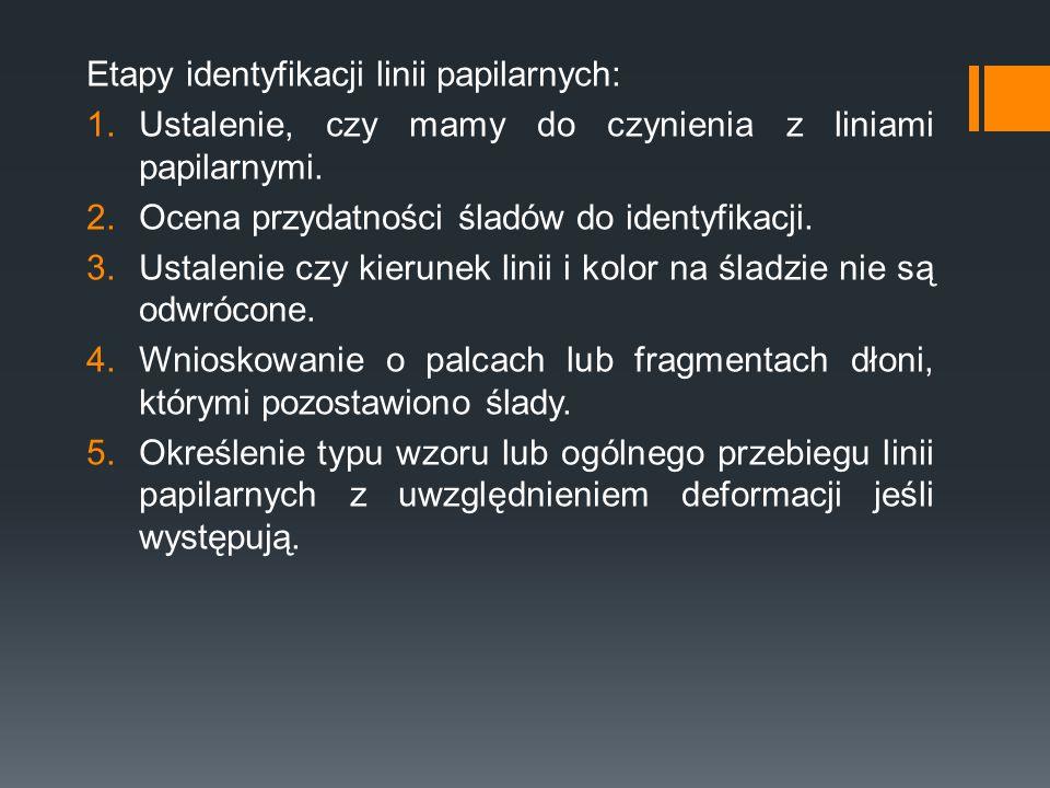 Etapy identyfikacji linii papilarnych: 1.Ustalenie, czy mamy do czynienia z liniami papilarnymi. 2.Ocena przydatności śladów do identyfikacji. 3.Ustal