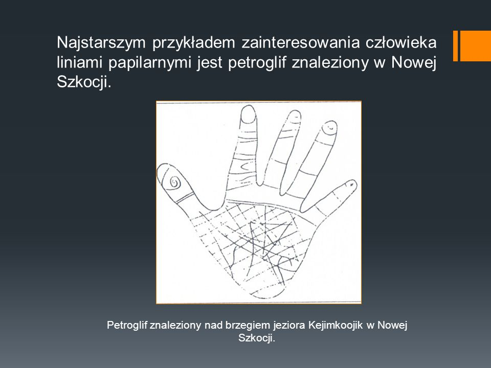 Najstarszym przykładem zainteresowania człowieka liniami papilarnymi jest petroglif znaleziony w Nowej Szkocji. Petroglif znaleziony nad brzegiem jezi