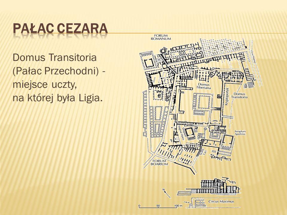 Domus Transitoria (Pałac Przechodni) - miejsce uczty, na której była Ligia.