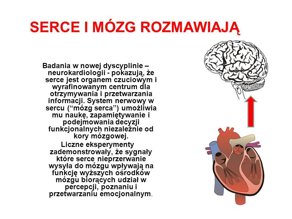 SERCE I MÓZG ROZMAWIAJĄ Badania w nowej dyscyplinie – neurokardiologii - pokazują, że serce jest organem czuciowym i wyrafinowanym centrum dla otrzymywania i przetwarzania informacji.