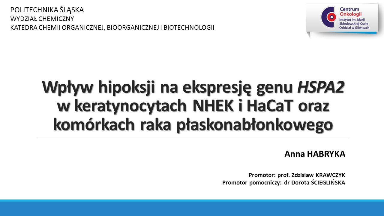 Wpływ hipoksji na ekspresję genu HSPA2 w keratynocytach NHEK i HaCaT oraz komórkach raka płaskonabłonkowego Anna HABRYKA Promotor: prof. Zdzisław KRAW