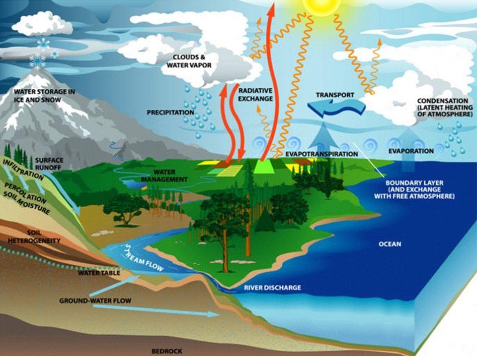 Wilgotność właściwa na kuli ziemskiej Ciepłe powietrze może zawierać więcej pary wodnej niż chłodne, zatem wilgotność właściwa jest największa na równiku i spada w kierunku biegunów.