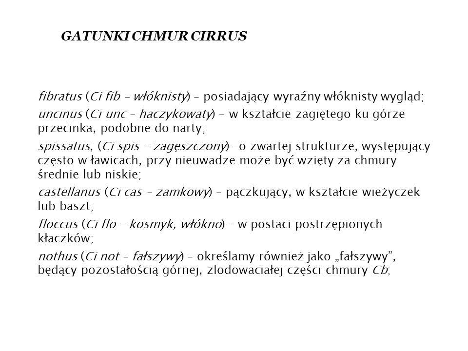 """fibratus (Ci fib – włóknisty) – posiadający wyraźny włóknisty wygląd; uncinus (Ci unc – haczykowaty) - w kształcie zagiętego ku górze przecinka, podobne do narty; spissatus, (Ci spis – zagęszczony) –o zwartej strukturze, występujący często w ławicach, przy nieuwadze może być wzięty za chmury średnie lub niskie; castellanus (Ci cas – zamkowy) – pączkujący, w kształcie wieżyczek lub baszt; floccus (Ci flo – kosmyk, włókno) – w postaci postrzępionych kłaczków; nothus (Ci not – fałszywy) – określamy również jako """"fałszywy , będący pozostałością górnej, zlodowaciałej części chmury Cb; GATUNKI CHMUR CIRRUS"""