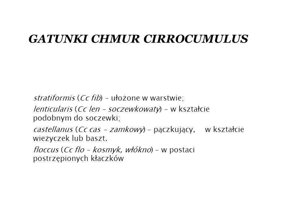 stratiformis (Cc fib) – ułożone w warstwie; lenticularis (Cc len – soczewkowaty) - w kształcie podobnym do soczewki; castellanus (Cc cas – zamkowy) – pączkujący, w kształcie wieżyczek lub baszt.