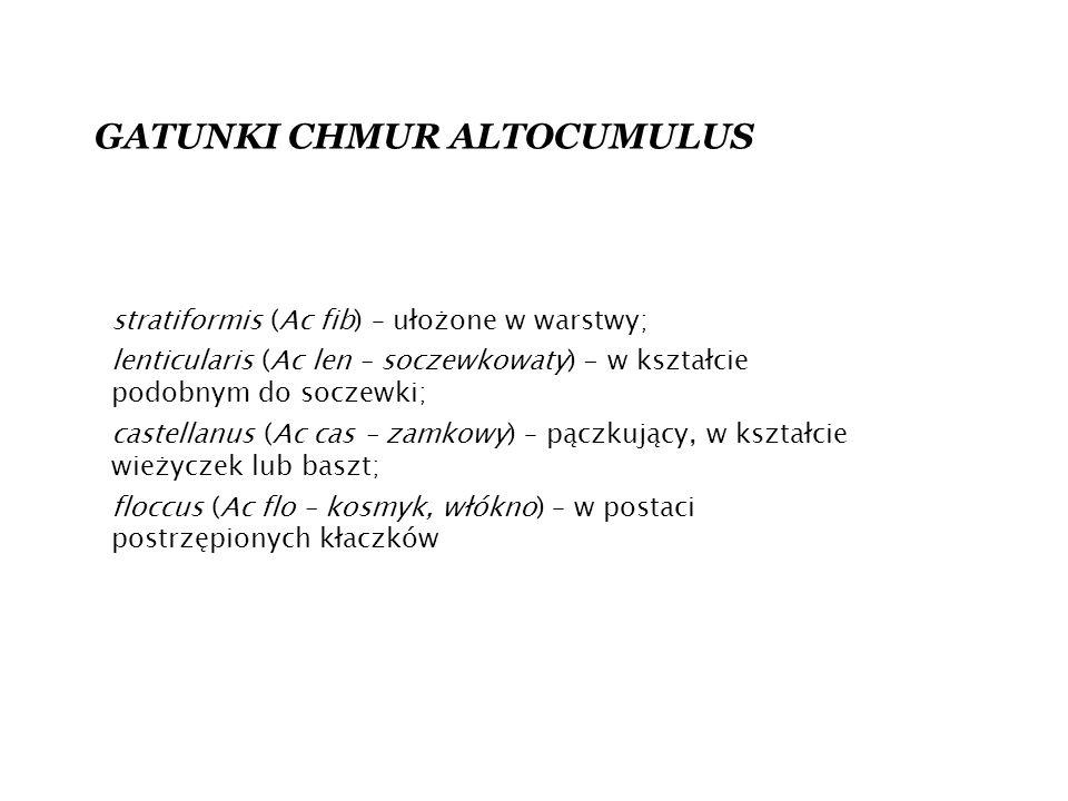 GATUNKI CHMUR ALTOCUMULUS stratiformis (Ac fib) – ułożone w warstwy; lenticularis (Ac len – soczewkowaty) - w kształcie podobnym do soczewki; castellanus (Ac cas – zamkowy) – pączkujący, w kształcie wieżyczek lub baszt; floccus (Ac flo – kosmyk, włókno) – w postaci postrzępionych kłaczków