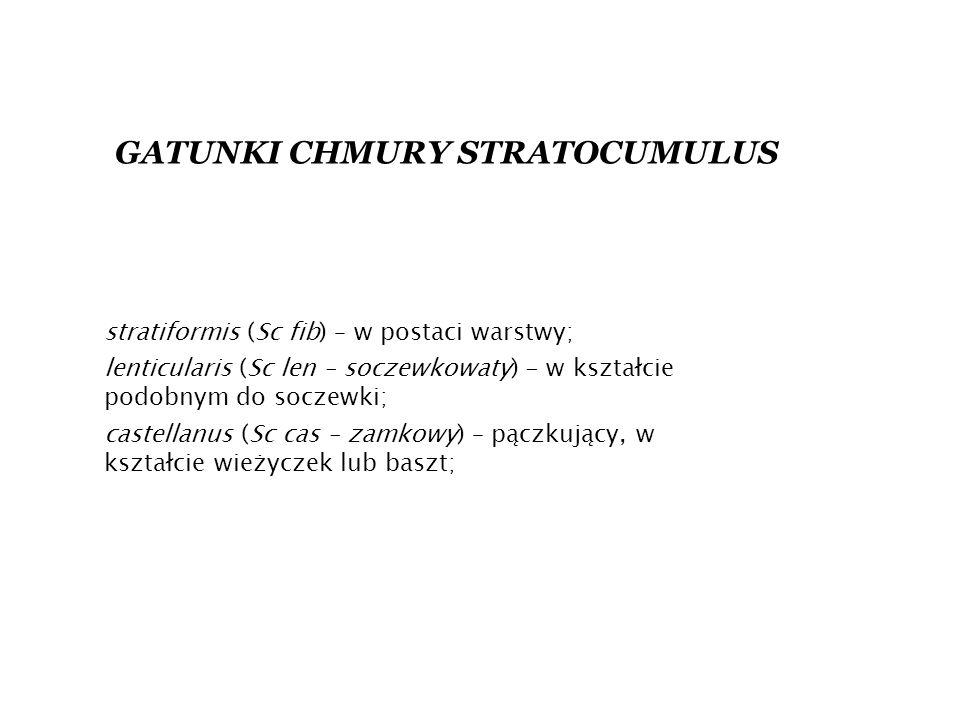 GATUNKI CHMURY STRATOCUMULUS stratiformis (Sc fib) – w postaci warstwy; lenticularis (Sc len – soczewkowaty) - w kształcie podobnym do soczewki; castellanus (Sc cas – zamkowy) – pączkujący, w kształcie wieżyczek lub baszt;