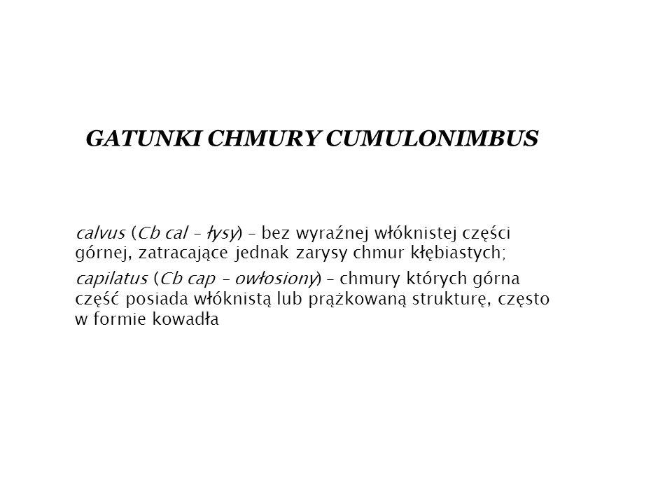 GATUNKI CHMURY CUMULONIMBUS calvus (Cb cal – łysy) – bez wyraźnej włóknistej części górnej, zatracające jednak zarysy chmur kłębiastych; capilatus (Cb cap – owłosiony) – chmury których górna część posiada włóknistą lub prążkowaną strukturę, często w formie kowadła