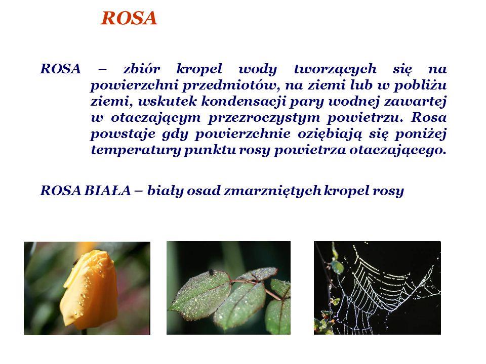 ROSA ROSA – zbiór kropel wody tworzących się na powierzchni przedmiotów, na ziemi lub w pobliżu ziemi, wskutek kondensacji pary wodnej zawartej w otaczającym przezroczystym powietrzu.