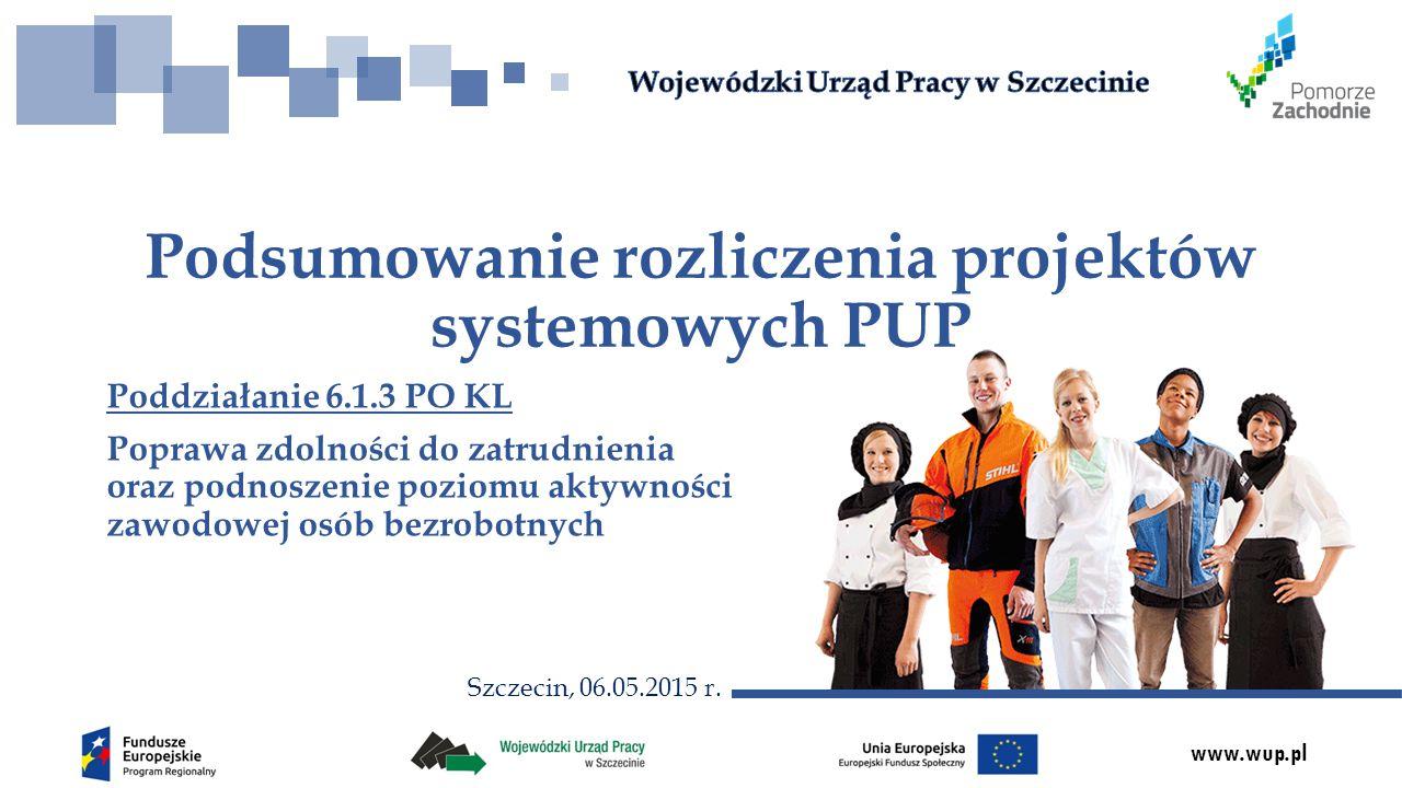 www.wup.pl Poddziałanie 6.1.3 PO KL Poprawa zdolności do zatrudnienia oraz podnoszenie poziomu aktywności zawodowej osób bezrobotnych Podsumowanie roz