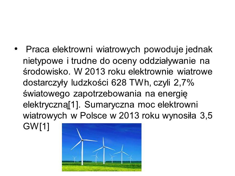 Praca elektrowni wiatrowych powoduje jednak nietypowe i trudne do oceny oddziaływanie na środowisko. W 2013 roku elektrownie wiatrowe dostarczyły ludz