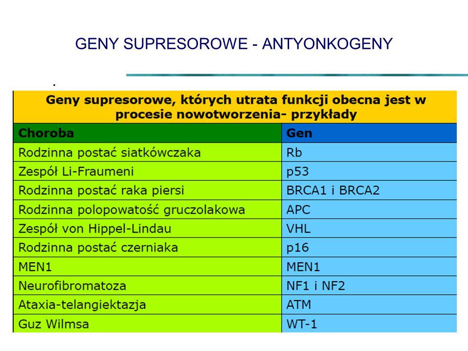 GENY SUPRESOROWE - ANTYONKOGENY.
