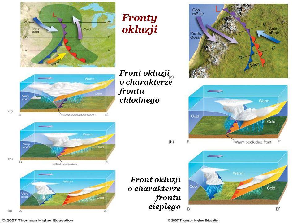 Fronty okluzji Front okluzji o charakterze frontu chłodnego Front okluzji o charakterze frontu ciepłego