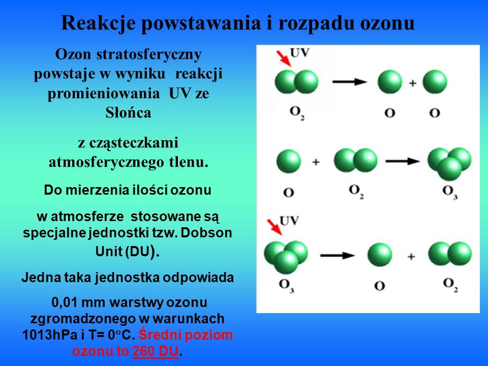 Reakcje powstawania i rozpadu ozonu Ozon stratosferyczny powstaje w wyniku reakcji promieniowania UV ze Słońca z cząsteczkami atmosferycznego tlenu. D