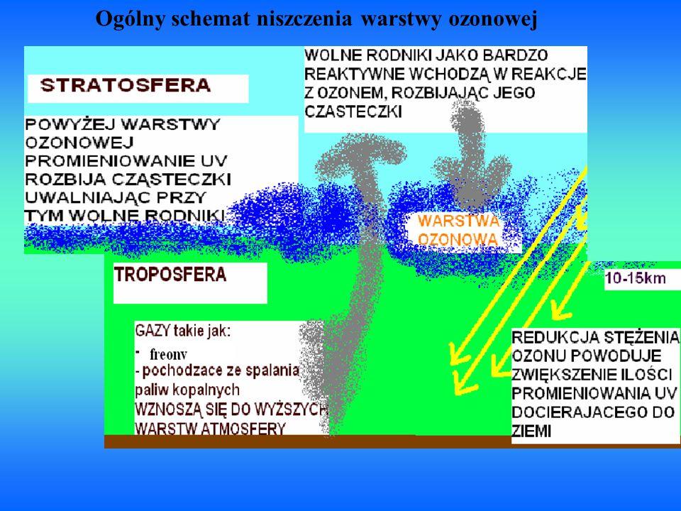 Ogólny schemat niszczenia warstwy ozonowej