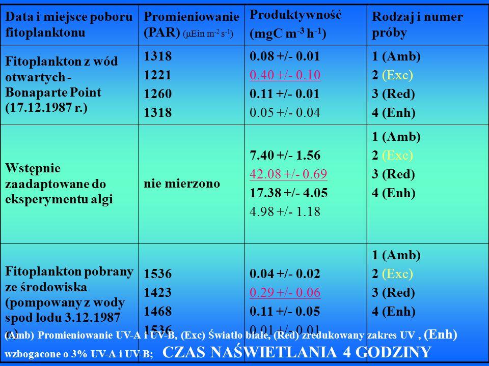 Warunki Czas inkubacj i [CHL c] [FUCOX] fukoksantyna [HFUCOX ] Heksanylo- fukoksantyna [CHL a] początkowe warunki światło białe (Exc) zredukowane UV (Red) UV-A i UV-B (Amb) wzbogacone UV (Enh) - 24 h 44 67 +/- 16 27 +/- 4 59 +/- 18 poza detekcją 243 231 +/- 71 129 +/- 10 263 +/- 77 49 +/- 16 36 39 +/- 14 23 +/- 2 29 +/- 11 4 +/- 6 484 590 +/- 165 344 +/- 35 650 +/- 210 104 +/- 41 światło białe (Exc) zredukowane UV (Red) UV-A i UV-B (Amb) wzbogacone UV (Enh) 48 h 64 +/- 33 7 +/- 12 24 +/- 9 poza detekcją 368 +/- 160 82 +/- 36 115 +/- 24 37 +/- 6 17 +/- 8 12 +/- 2 23 +/- 10 poza detekcją 844 +/- 379 278 +/- 97 363 +/- 70 106 +/- 20 Naświetlanie wody pompowanej spod lodu przez 24 godziny (06.12.1987 r.) i przez 48 godzin (08.12.1987 r.)