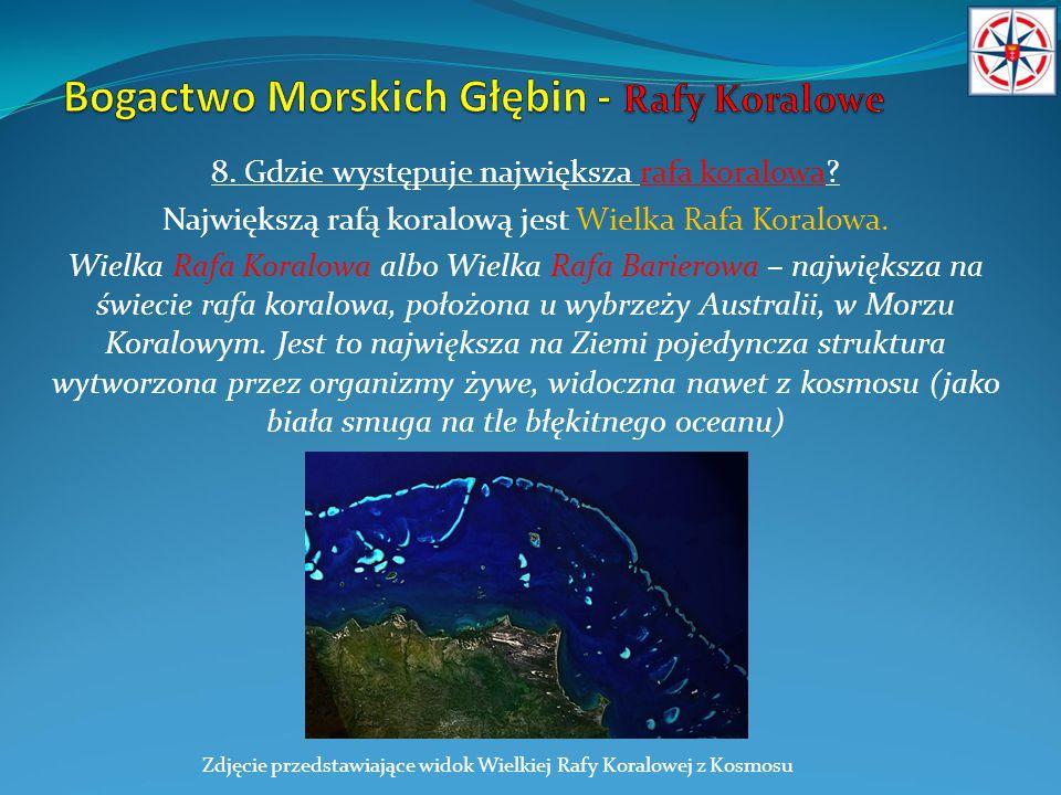 8. Gdzie występuje największa rafa koralowa? Największą rafą koralową jest Wielka Rafa Koralowa. Wielka Rafa Koralowa albo Wielka Rafa Barierowa – naj