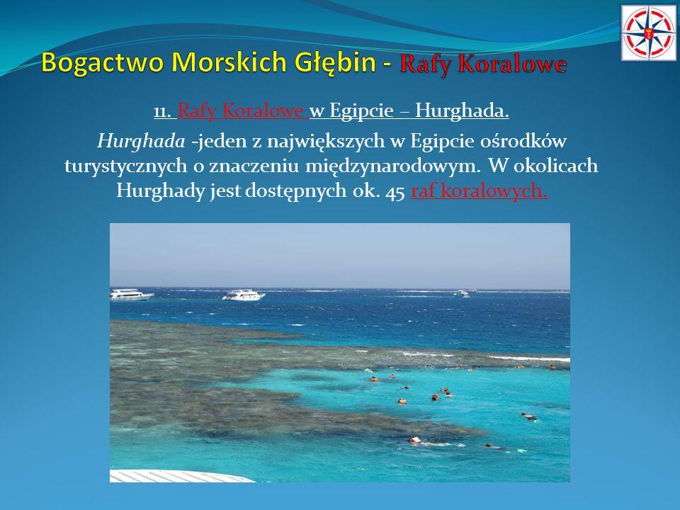 11. Rafy Koralowe w Egipcie – Hurghada. Hurghada -jeden z największych w Egipcie ośrodków turystycznych o znaczeniu międzynarodowym. W okolicach Hurgh