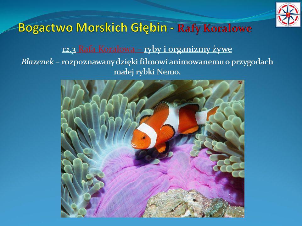 12.3 Rafa Koralowa – ryby i organizmy żywe Błazenek – rozpoznawany dzięki filmowi animowanemu o przygodach małej rybki Nemo.