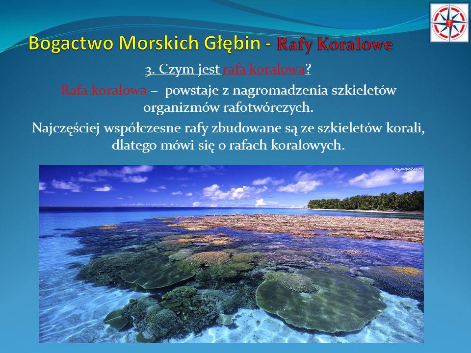 4.Z czego tworzone są rafy koralowe.