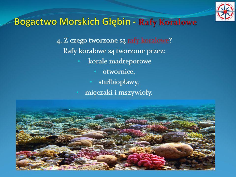 4. Z czego tworzone są rafy koralowe? Rafy koralowe są tworzone przez: korale madreporowe otwornice, stułbiopławy, mięczaki i mszywioły.