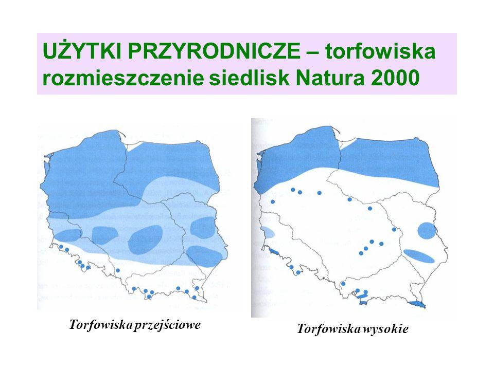 UŻYTKI PRZYRODNICZE – torfowiska rozmieszczenie siedlisk Natura 2000 Torfowiska przejściowe Torfowiska wysokie
