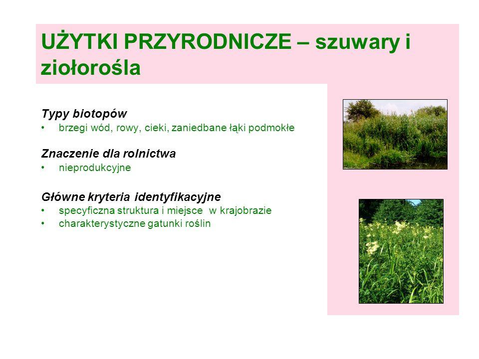 UŻYTKI PRZYRODNICZE – szuwary i ziołorośla Typy biotopów brzegi wód, rowy, cieki, zaniedbane łąki podmokłe Znaczenie dla rolnictwa nieprodukcyjne Główne kryteria identyfikacyjne specyficzna struktura i miejsce w krajobrazie charakterystyczne gatunki roślin