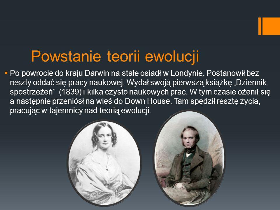Powstanie teorii ewolucji  Po powrocie do kraju Darwin na stałe osiadł w Londynie. Postanowił bez reszty oddać się pracy naukowej. Wydał swoją pierws