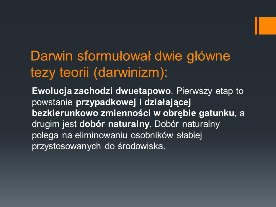 Darwin sformułował dwie główne tezy teorii (darwinizm): Ewolucja zachodzi dwuetapowo. Pierwszy etap to powstanie przypadkowej i działającej bezkierunk