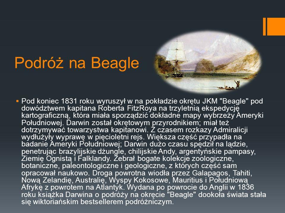Podróż na Beagle  Pod koniec 1831 roku wyruszył w na pokładzie okrętu JKM