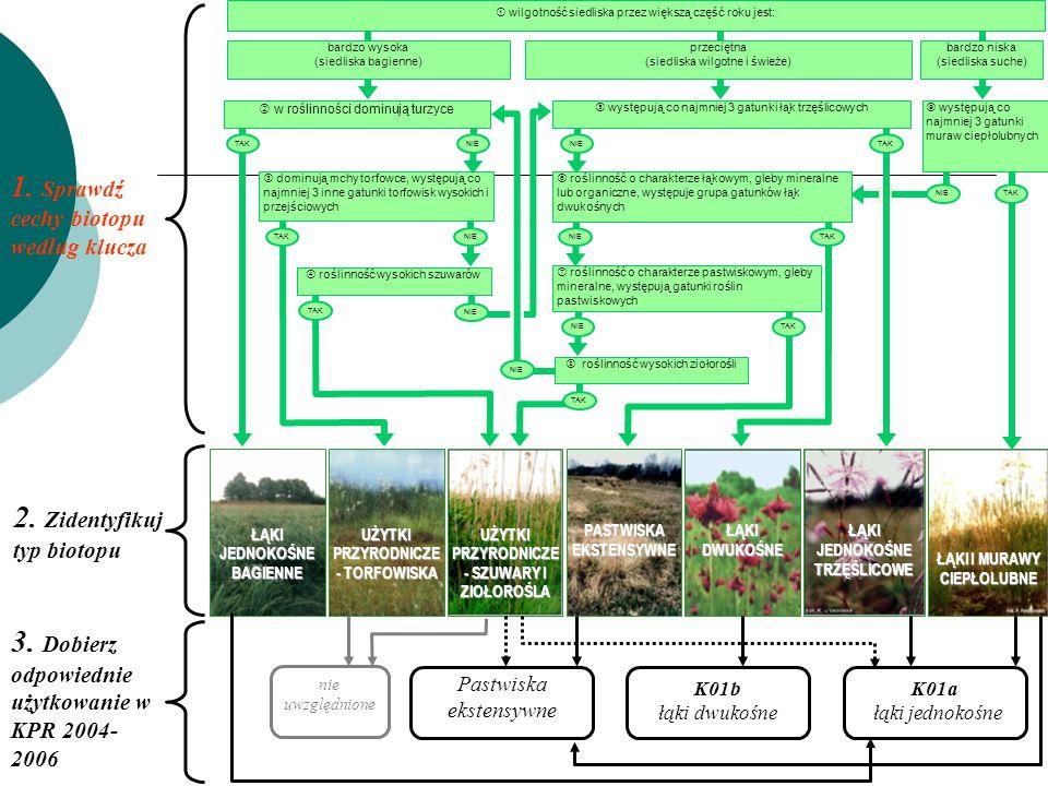 K01a łąki jednokośne 1. Sprawdź cechy biotopu według klucza ŁĄKI JEDNOKOŚNE BAGIENNE UŻYTKI PRZYRODNICZE - TORFOWISKA UŻYTKI PRZYRODNICZE - SZUWARY I