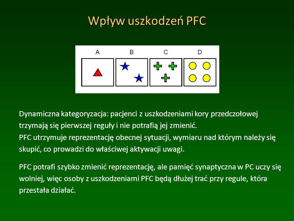 Wpływ uszkodzeń PFC Dynamiczna kategoryzacja: pacjenci z uszkodzeniami kory przedczołowej trzymają się pierwszej reguły i nie potrafią jej zmienić.