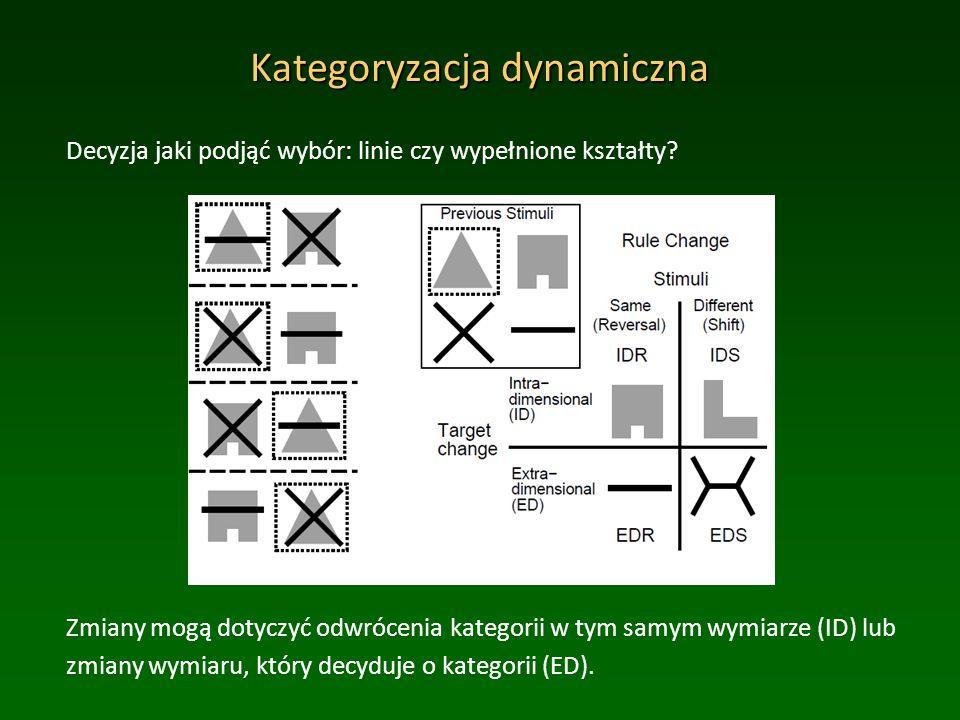Kategoryzacja dynamiczna Decyzja jaki podjąć wybór: linie czy wypełnione kształty.