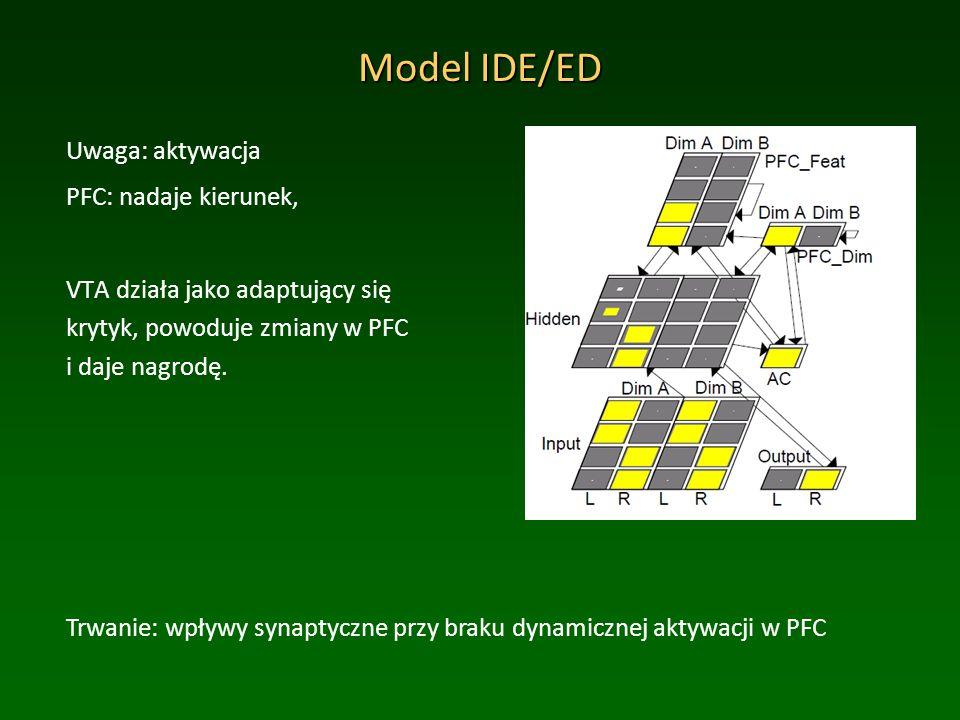 Model IDE/ED Uwaga: aktywacja PFC: nadaje kierunek, VTA działa jako adaptujący się krytyk, powoduje zmiany w PFC i daje nagrodę.