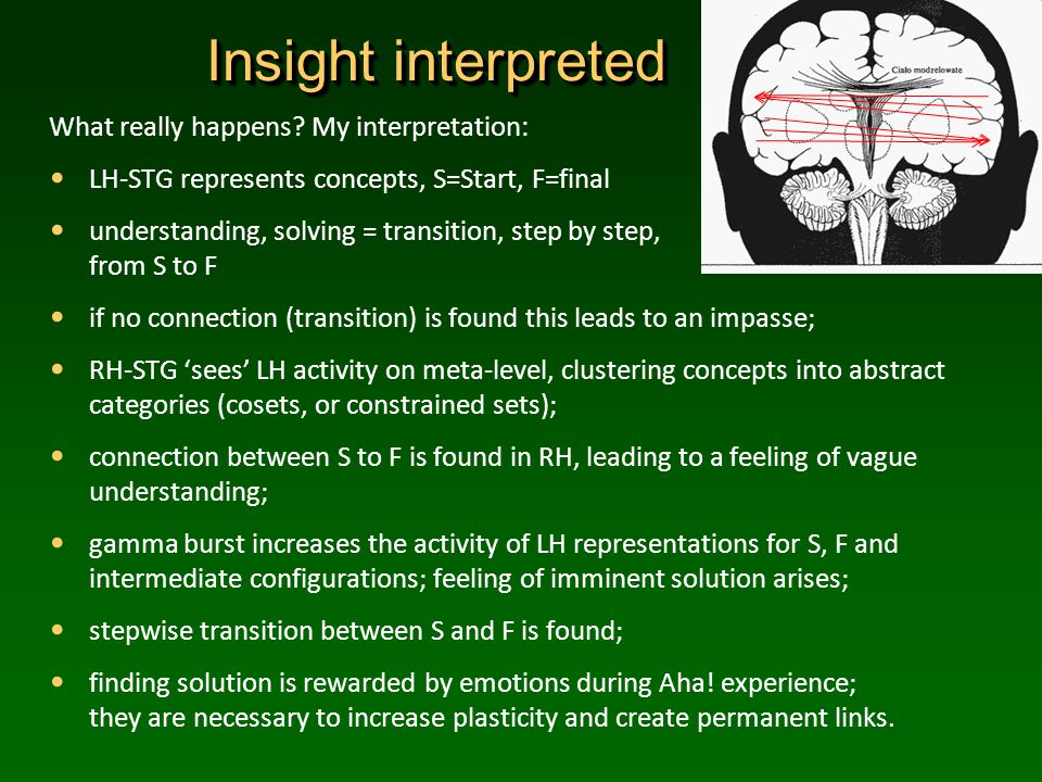 Insight interpreted What really happens.