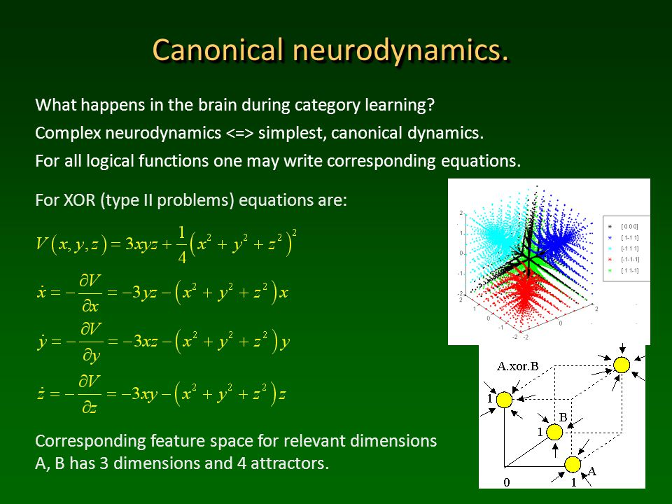 Canonical neurodynamics. What happens in the brain during category learning.