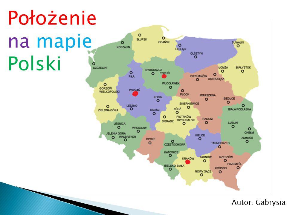 Chór Chłopięco-Męski Filharmonii Poznańskiej.