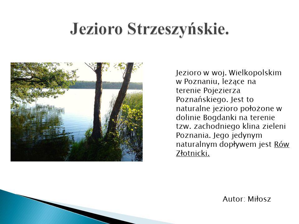 Jezioro w woj. Wielkopolskim w Poznaniu, leżące na terenie Pojezierza Poznańskiego. Jest to naturalne jezioro położone w dolinie Bogdanki na terenie t