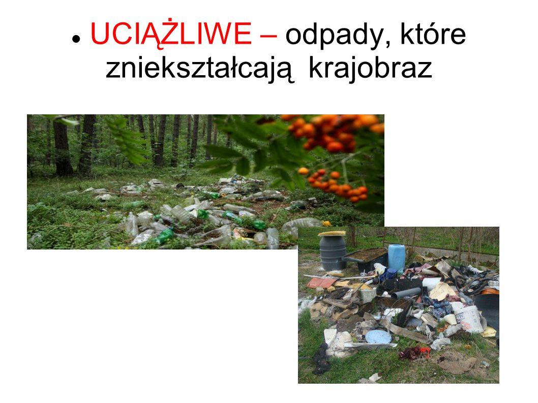 UCIĄŻLIWE – odpady, które zniekształcają krajobraz