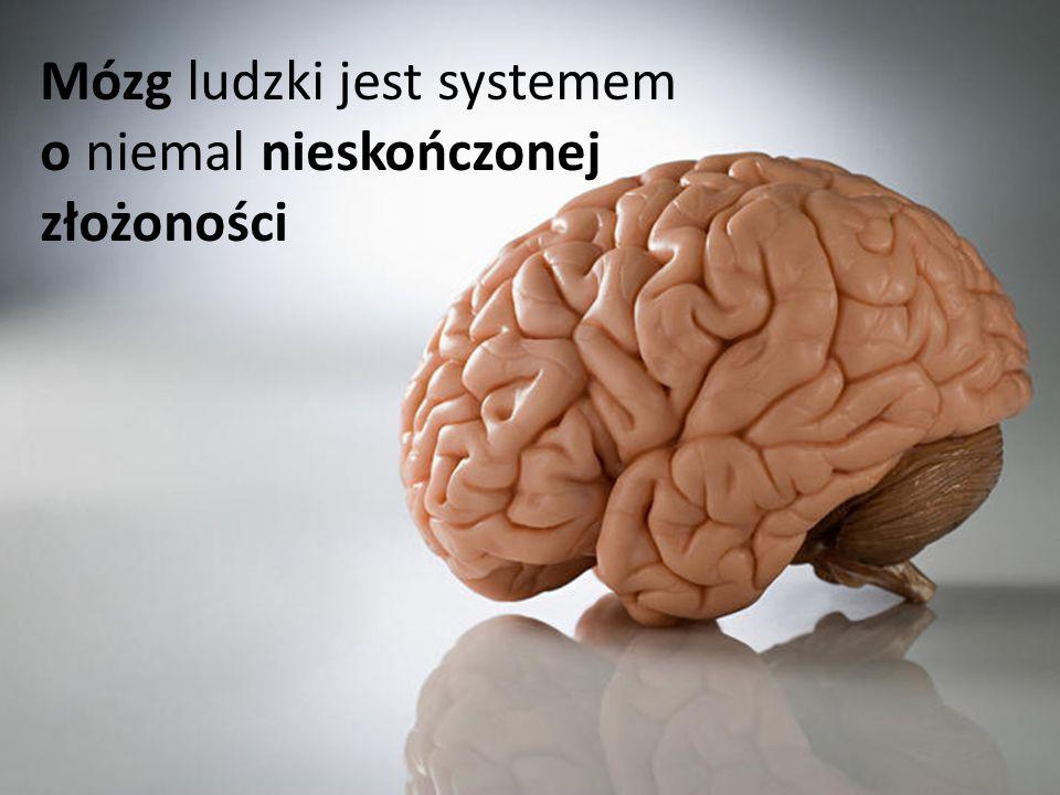 Mózg ludzki jest systemem o niemal nieskończonej złożoności