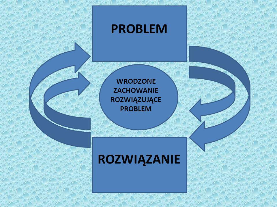 PROBLEM ROZWIĄZANIE WRODZONE ZACHOWANIE ROZWIĄZUJĄCE PROBLEM