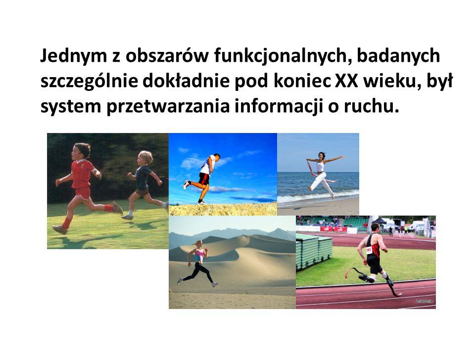 Jednym z obszarów funkcjonalnych, badanych szczególnie dokładnie pod koniec XX wieku, był system przetwarzania informacji o ruchu.