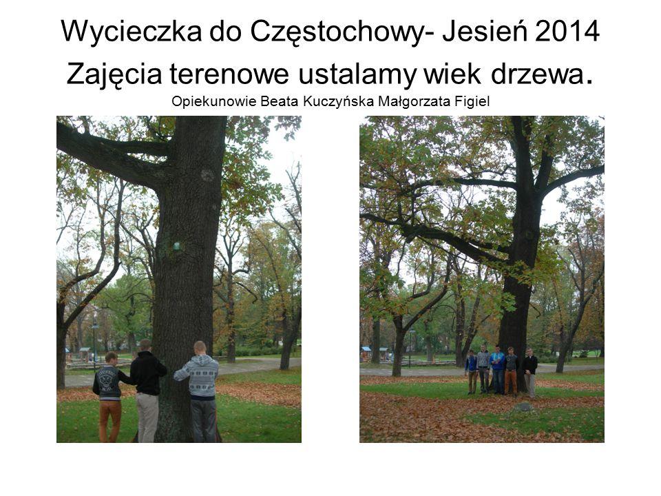 Wycieczka do Częstochowy- Jesień 2014 Zajęcia terenowe ustalamy wiek drzewa. Opiekunowie Beata Kuczyńska Małgorzata Figiel