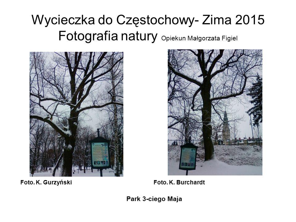 Wycieczka do Częstochowy- Zima 2015 Fotografia natury Opiekun Małgorzata Figiel Foto. K. GurzyńskiFoto. K. Burchardt Park 3-ciego Maja